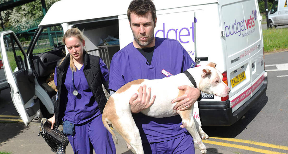 Rhod Gilbert at Budget Vets, Newport