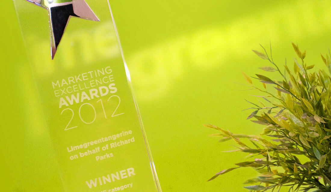 Limegreentangerine marketing award